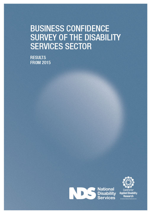 NDS Report, Annual Report, Graphic Design Image 1