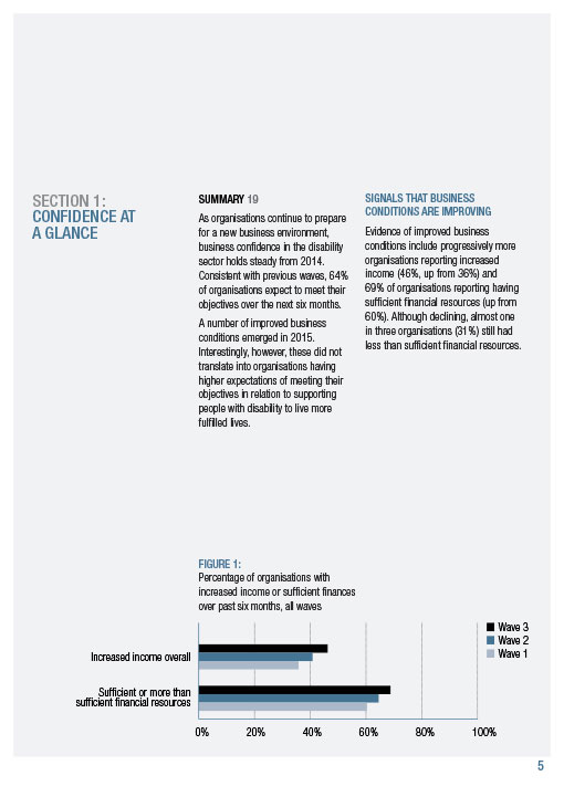 NDS Report, Annual Report, Graphic Design Image 3