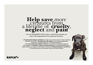 RSPCA charity poster design by the end creative agency cammeray sydney