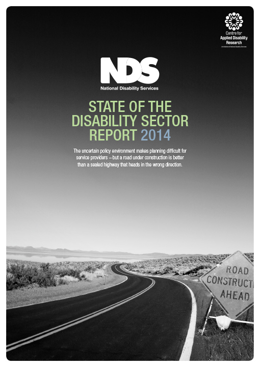 NDS Report, Annual Report, Graphic Design